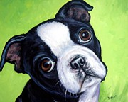 Dog Art Paintings - Boston Terrier Pup on Green by Dottie Dracos