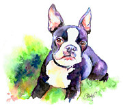 French Bulldog Paintings - Boston Terrier puppy by Christy  Freeman
