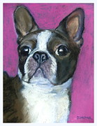 Boston Pastels Prints - Boston Winnie Print by Sue Gardner
