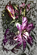 Lilies Digital Art - Botanic Still Life On Heavy Canvas by Jill Balsam