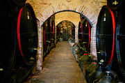 Wine Cellar Originals - Botti by John Galbo
