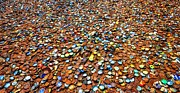 A.m Photos - Bottlecap Alley by David Morefield
