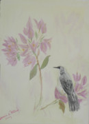 Mockingbird Paintings - Bougainvillea and Mockingbird by Donna Walsh