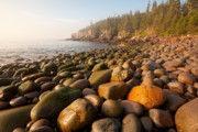 Binh Posters - Boulder Beach Acadia National Park Maine Poster by Binh Ly