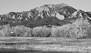 Colorado Front Range Photos - Boulder Colorado Flatiron View From Jay Rd BW by James Bo Insogna