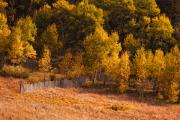 Lightning Fine Art Posters Prints - Boulder County Colorado Autumn Landscape Print by James Bo Insogna