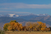 Grazing Snow Prints - Boulder County Colorado Continental Divide Autumn View Print by James Bo Insogna
