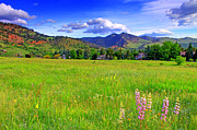 Colorado Landscape Photography Posters - Boulder Park View Poster by Scott Mahon
