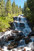 Agassiz Prints - Boulder Pass Falls Print by Scotts Scapes