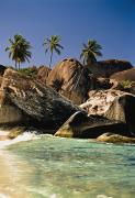 Virgin Gorda Island Art - Boulders And Palm Trees On Tropical by Axiom Photographic