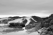 Dunes Prints - Bound Brook Island Dunes Cape Cod Print by Michelle Wiarda