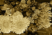 Bouquet In Sepia Print by Phyllis Denton