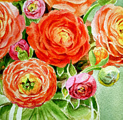 Ranunculus Paintings - Bouquet by Irina Sztukowski