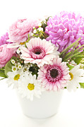 Flowers Gerbera Posters - Bouquet of flowers Poster by Elena Elisseeva