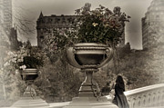 Olia Saunders Metal Prints - Bow Bridge Central Park New York Vintage 3 Metal Print by Design Remix