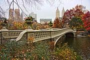 Autumn Trees Prints - Bow Bridge In Central Park Print by June Marie Sobrito