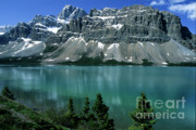 Cliffs Posters - Bow Lake Area Poster by Sandra Bronstein