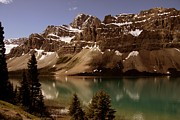 Bow Lake Print by Vickie Emms