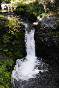 Arlyn Petrie Metal Prints - Bowl Falls Metal Print by Arlyn Petrie
