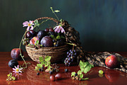 Grape Vine Photos - Bowl Of Fruit by Panga Natalie Ukraine