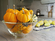 Marlene Ford - Bowl Of Gourds And Mini...
