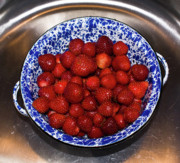 Stainless Steel Prints - Bowl of Strawberries 1 Print by Douglas Barnett