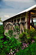 Covered Bridge Digital Art Prints - Bowsers Covered Bridge in May Print by Lois Bryan