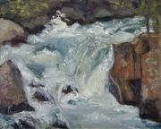 Colorado Mountain Stream Paintings - Box Canyon Roar by Zanobia Shalks