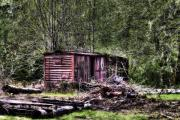 Logging Camp Prints - Box Car Print by David Patterson