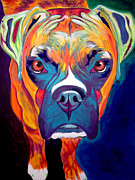 Dawgart Metal Prints - Boxer - Harley Metal Print by Alicia VanNoy Call