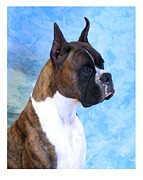 Boxer Digital Art Metal Prints - Boxer 13 Metal Print by Larry Matthews