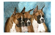 Boxer Digital Art Metal Prints - Boxer 655 Metal Print by Larry Matthews