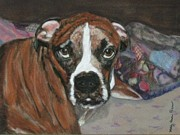 Boxer Pastels - Boxer beauty by Molly Gochenour