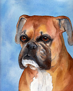 Boxer Portrait Paintings - Boxer by Cherilynn Wood