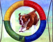 Boxer Drawings - Boxer Dog Agility Class by Olde Time  Mercantile