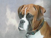 Boxer Painting Prints - Boxer Print by Gael Keevil