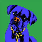 Boxer Dog Digital Art Originals - Boxer by M Felix