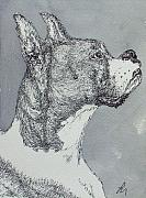 Prairie Dog Drawings Originals - Boxer by Pete Maier