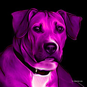 Boxer Digital Art - Boxer Pitbull Mix Pop Art - Magenta by James Ahn