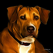 Boxer Digital Art - Boxer Pitbull Mix Pop Art - Orange by James Ahn