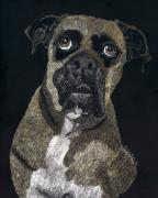 Puppy Mixed Media - Boxer Portrait by Jessica Kale