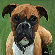 Boxer Painting Prints - Boxer Puppy Print by Dawn Davis
