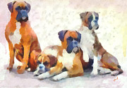 Boxer Painting Prints - Boxer Quartet Print by Patty Dunlap