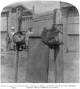 Boxer Rebellion, Heads Of Beheaded Print by Everett
