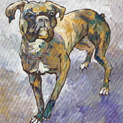 Boxer Portrait Paintings - Boxer by Sandy Tracey