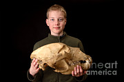 Kodiak Framed Prints - Boy Holding Kodiak Bear Skull Framed Print by Ted Kinsman