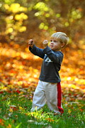 Kevin Schrader Metal Prints - Boy in Fall Metal Print by Kevin Schrader