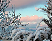 Larimer County Photos - Boyd Lake Winter Sunrise by Harry Strharsky