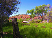 Boynton Canyon Prints - Boynton Canyon Arizona Print by Jen White