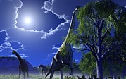 Moonlit Night Prints - Brachiosaurus Dinosaurs, Artwork Print by Roger Harris
